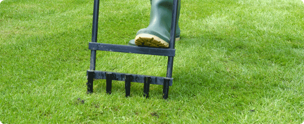 aerate lawn without machine